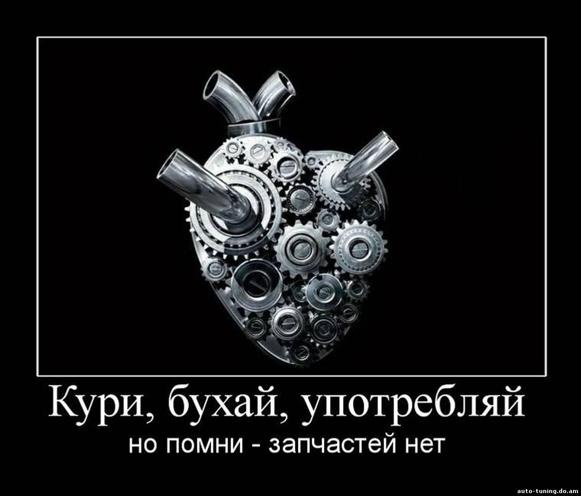 Скачать бесплатно на русском языке простой фотошоп фотографий